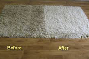 Oriental and Area Rug Cleaning Pacific Palisades