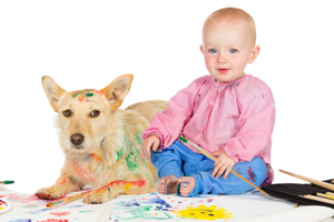 Pet Stain and Odor Removal Pacific Palisades
