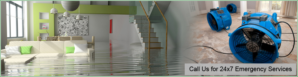 Water Damage Restoration Pacific Palisades